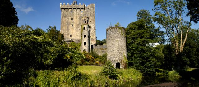 blarney castle and gardens banner